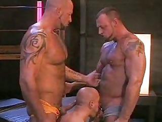 tattooed homo mates enjoying every other