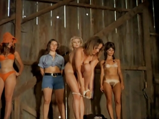 chicks stripping on stage 1688