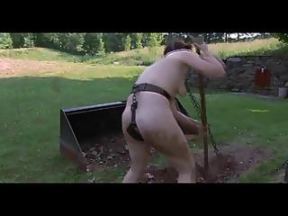 sadomasochism outdoor humiliation - dig serf dig