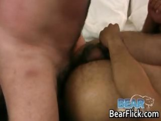 large homo unshaved bears fucking brace part2